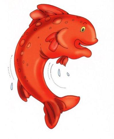 animales marinos64
