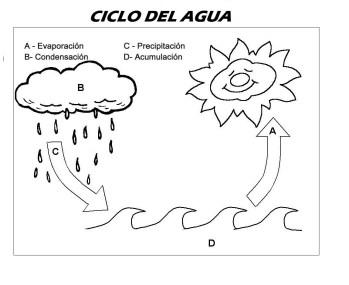 ciclo del agua,ciclo del agua para colorear