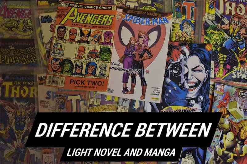 Difference Between Light Novel And Manga