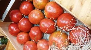 tomates - baja