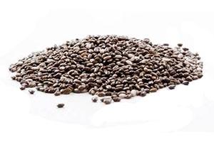 semi di chia per dimagrire