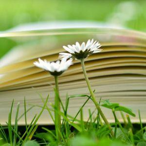 Libros de flores de bach