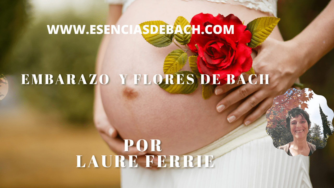 video sobre embarazo y flores de bach