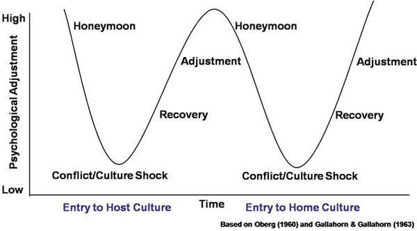 The cultural adjustment cycle