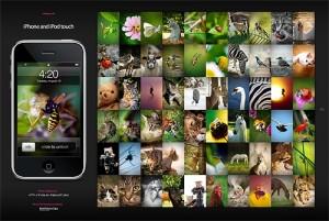 blog-a00-display