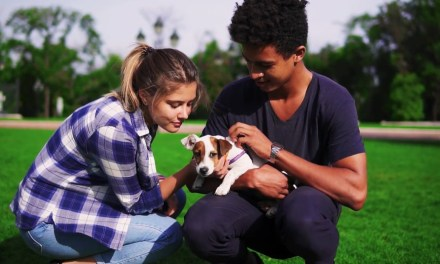 Animal Health Company Elanco Launches New 2030 Sustainability Commitments