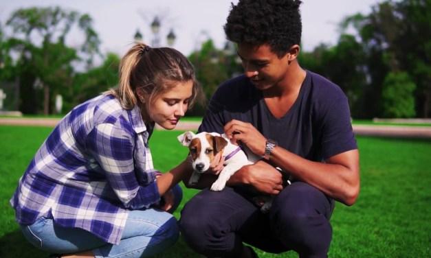 Animal Health Company Elanco Launches New 2030 Sustainability Commitments