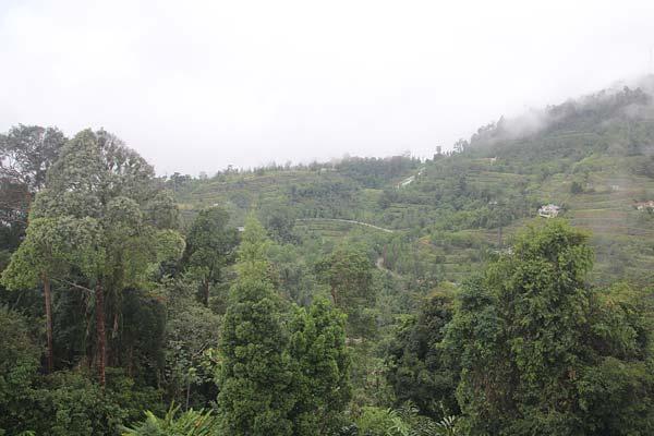bukit-tinggi-colmar-tropicale-pahang-travel-shamphotography