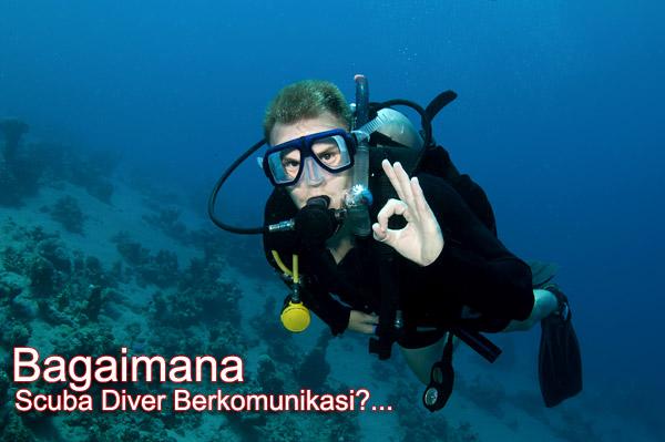 isyarat-tangan-scuba-diver-komunikasi-didalam-air-penyelam-bahasa-isyarat-shamphotography-01