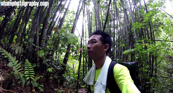 lata-medang-kg-pertak-kuala-kubu-bharu-fraser-hill-hiking-nature-outdoor-adventures-shamphotography