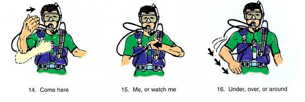 scuba-diving-hand-signal-shamphotography