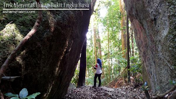 trek-merentas-hutan-bukit-engku-busu-lumut-perak-hiking-di-lumut-lokasi-mendaki-di-lumut-eshamzhalim-29