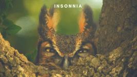 Insonnia, rimedi naturali per dormire meglio