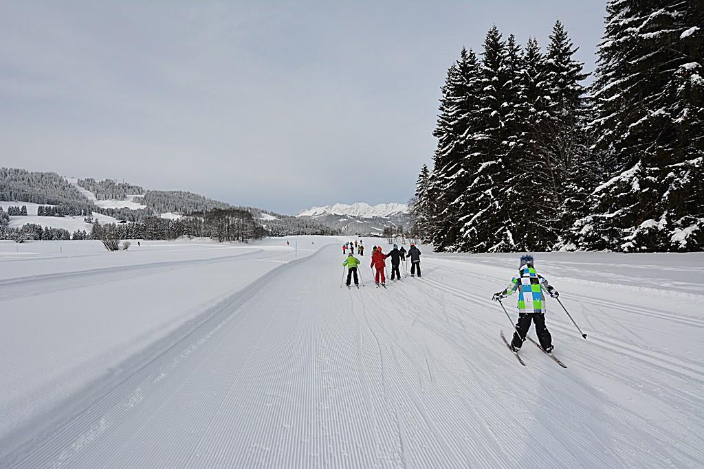 Ski de fond CM1-CM2