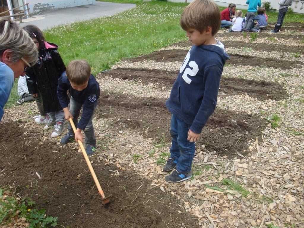 Jardiniers en herbe : les MS GS au jardin des écolobristes