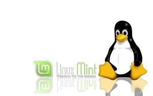 Installatie Linux mint