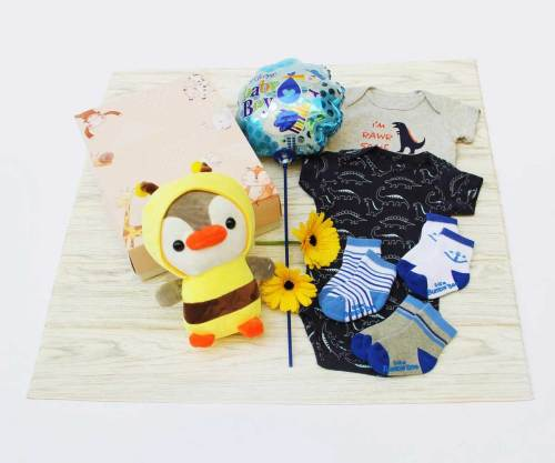 Lullaby Prince | Newborns Baby Gifts | Eska Creative Gifting