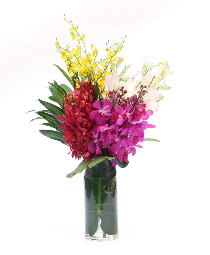 Tropical Orchids Bouquet | Flowers In Vase | Eska Creative Gifting