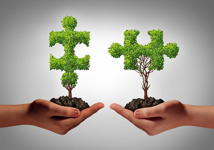 cultivation-buidling-relationships-with-donors