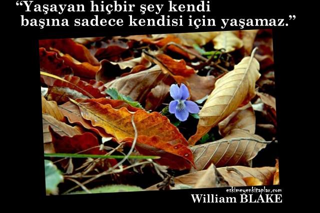 william-Blake-sozleri