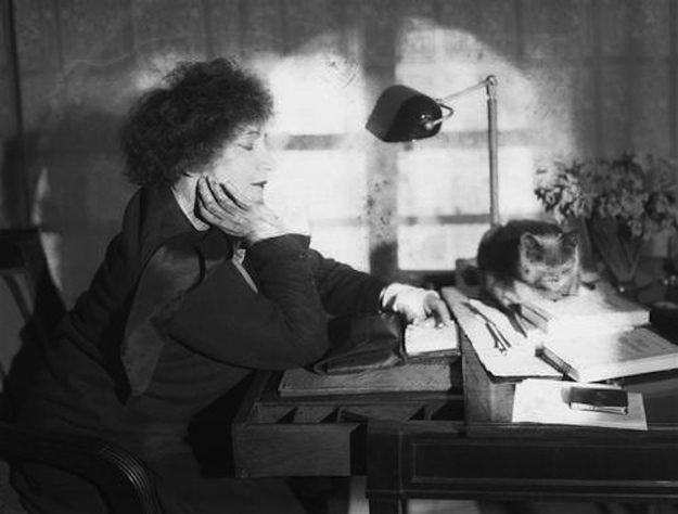 Colette-and-cats