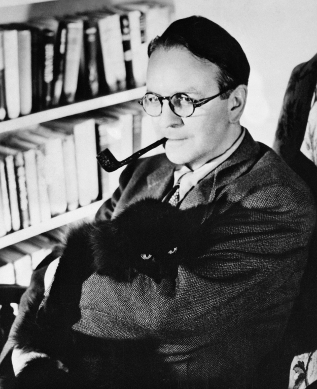 Raymond-Chandler-cats
