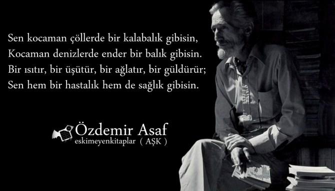 ozdemir-asaf-ask-siiri