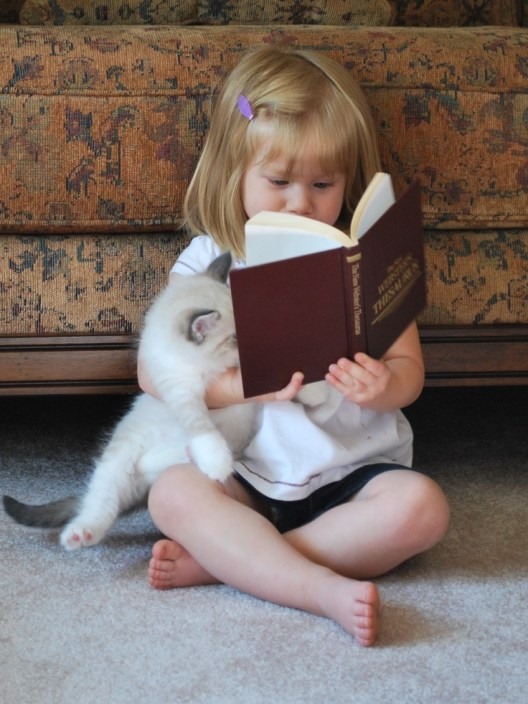 child-cat-and-book-reading-2