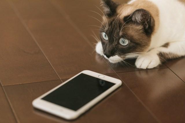 スマホで、通話中に画面が暗くなって、なにも操作が出来なくなる!
