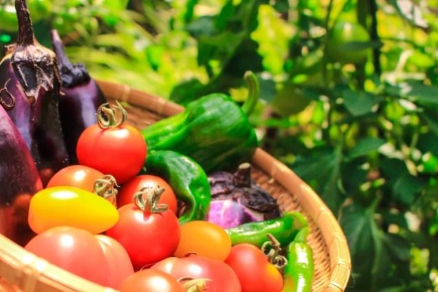 ガン細胞を抑制させる野菜