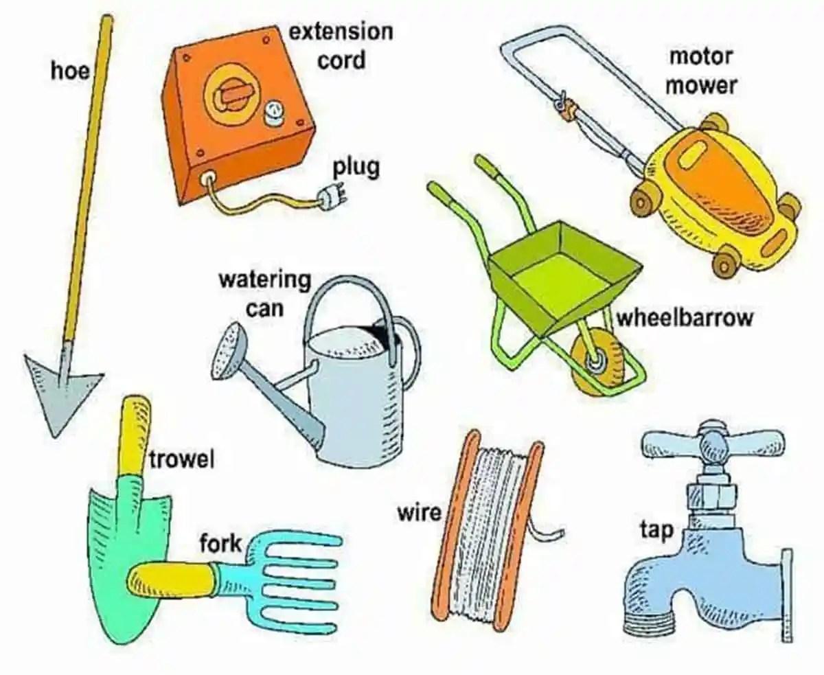 In the Garden Vocabulary 15