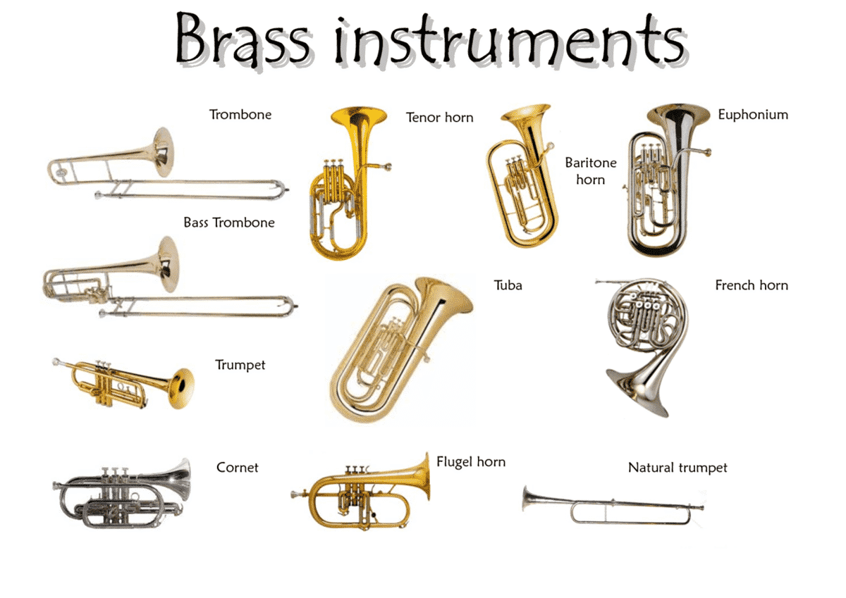 Worksheet Types Of Instruments learn english vocabulary through pictures musical instruments woodwind instrument