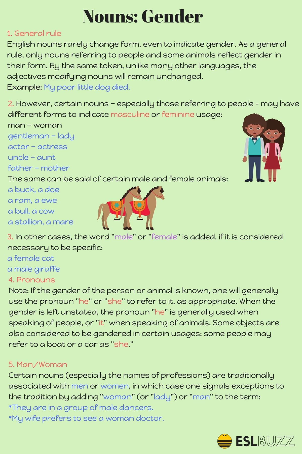 English Grammar The Gender Of Nouns In English
