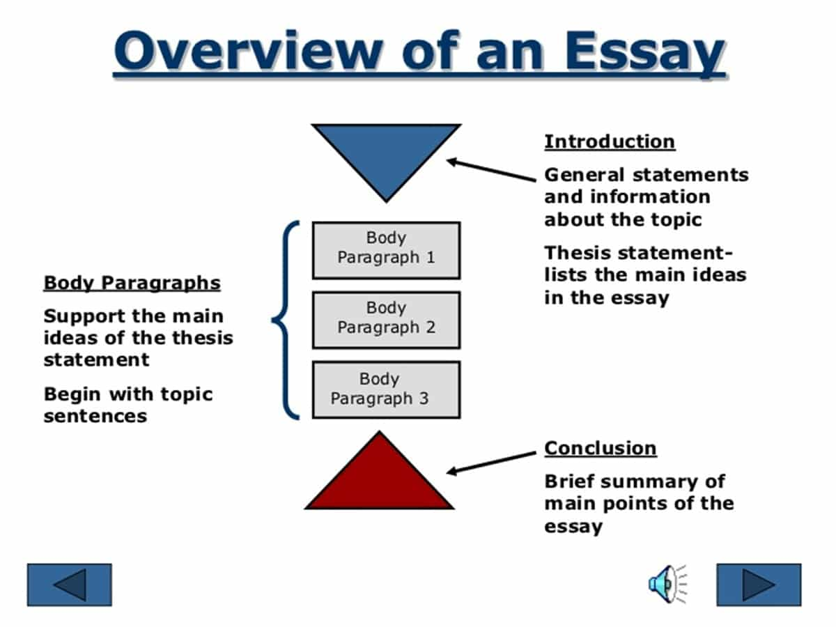 step by step essay writing instructions