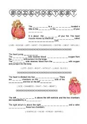 Test About Cardiovascular System