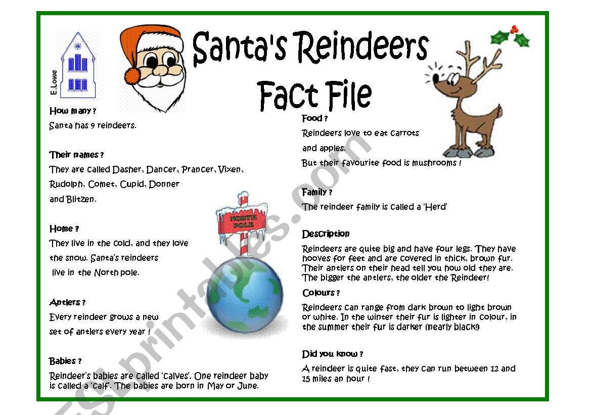 Santa S Reindeers Factfile And Quiz