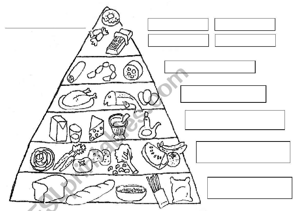 Nutrition Food Pyramid Worksheet