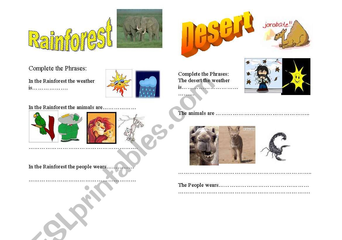 English Worksheets Rainforest And Desert