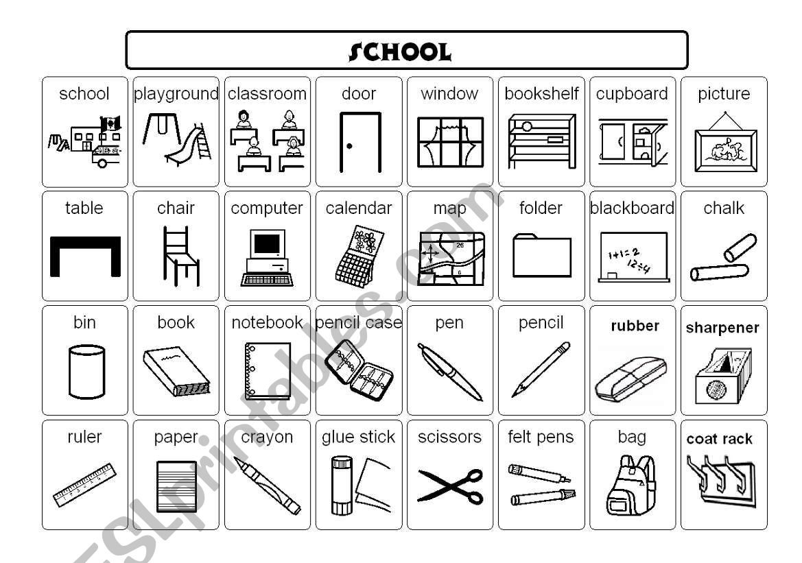 School Vocabulary