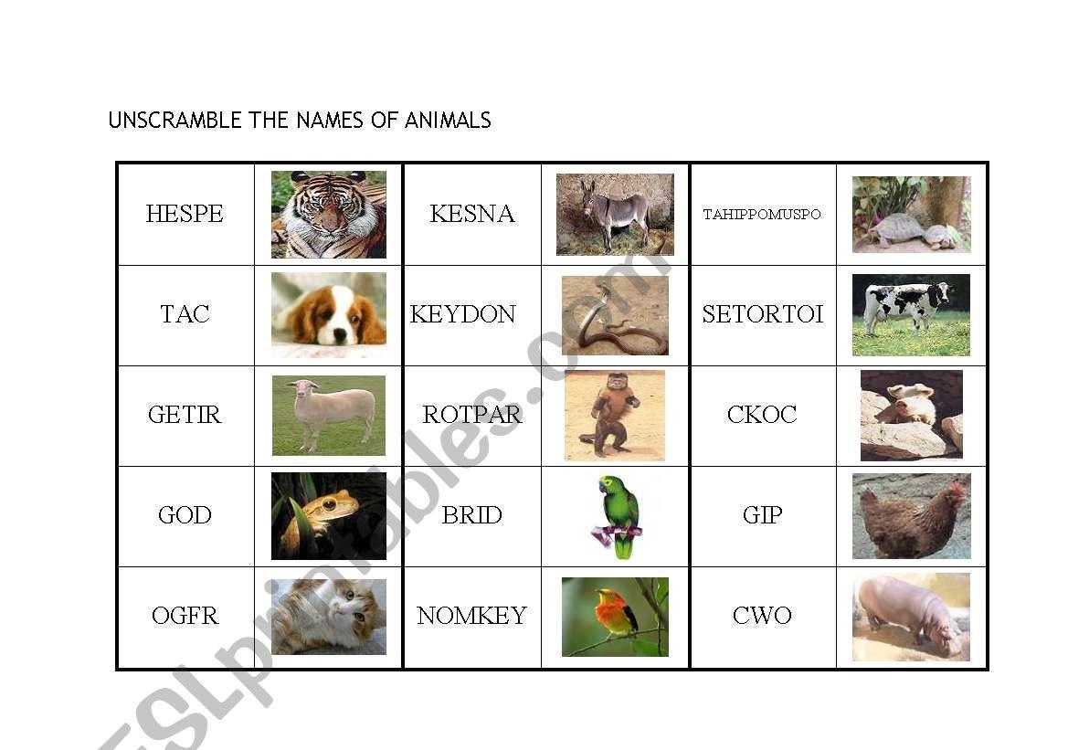 English Worksheets Unscramble The Names Of Animals