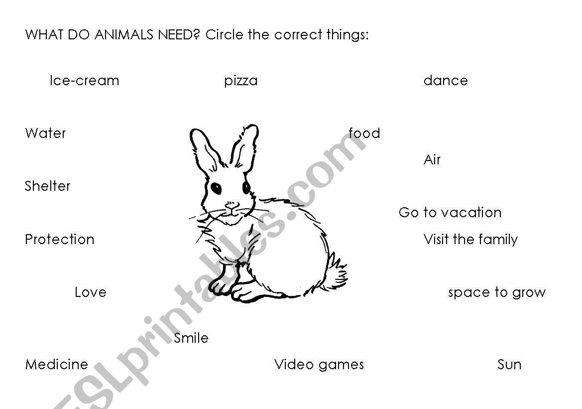 English Worksheets What Do Animals Need