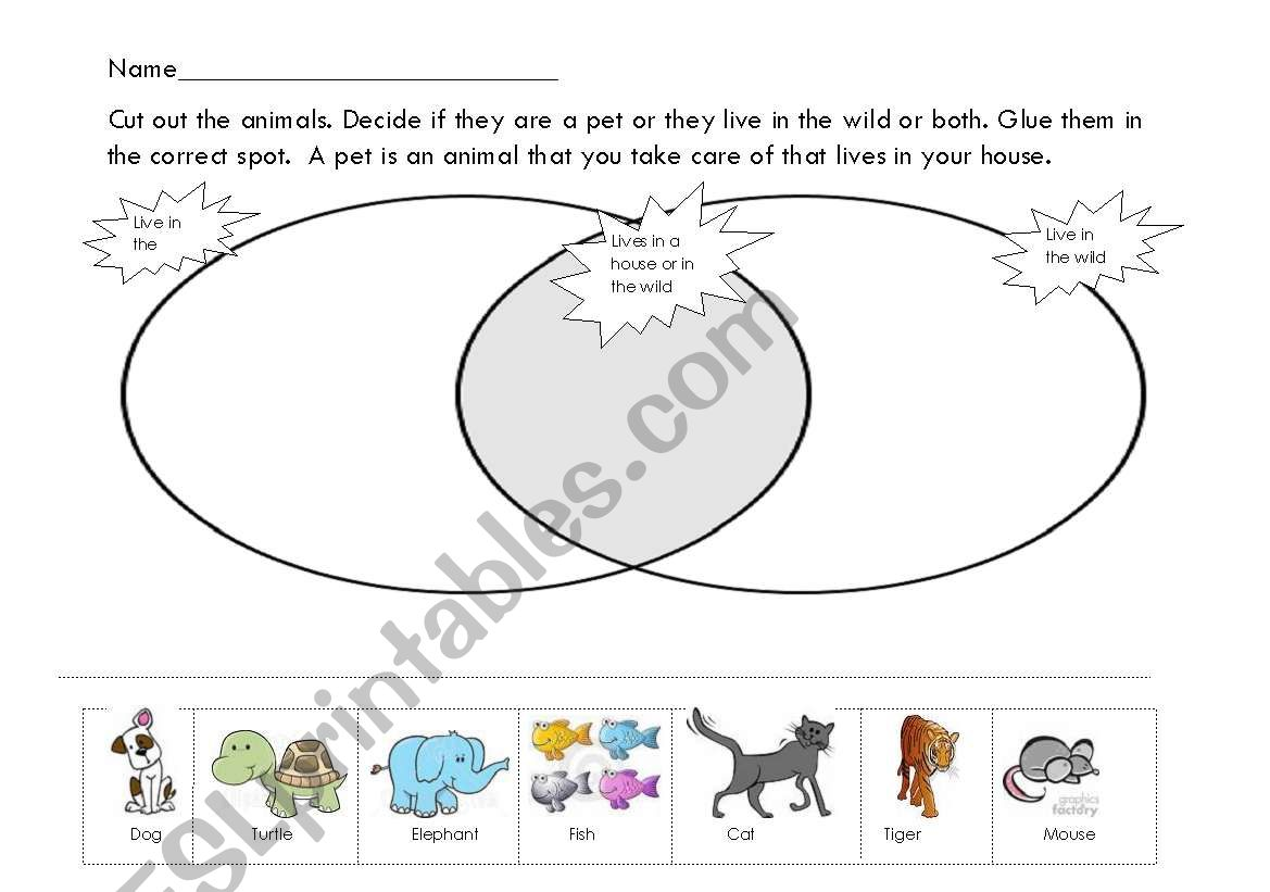 English Worksheets Pet Venn Diagram