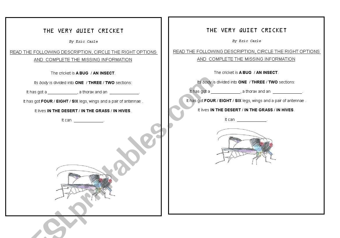 English Worksheets The Very Quiet Cricket