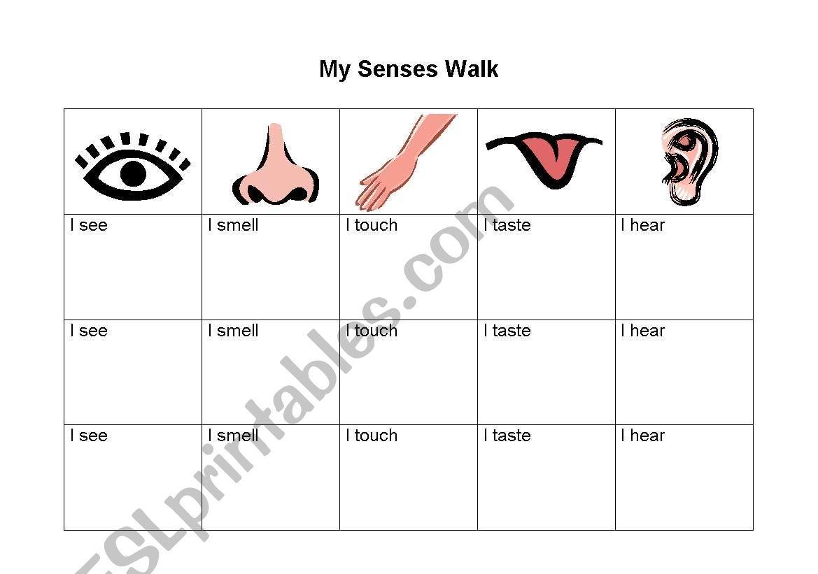 My Senses Walk