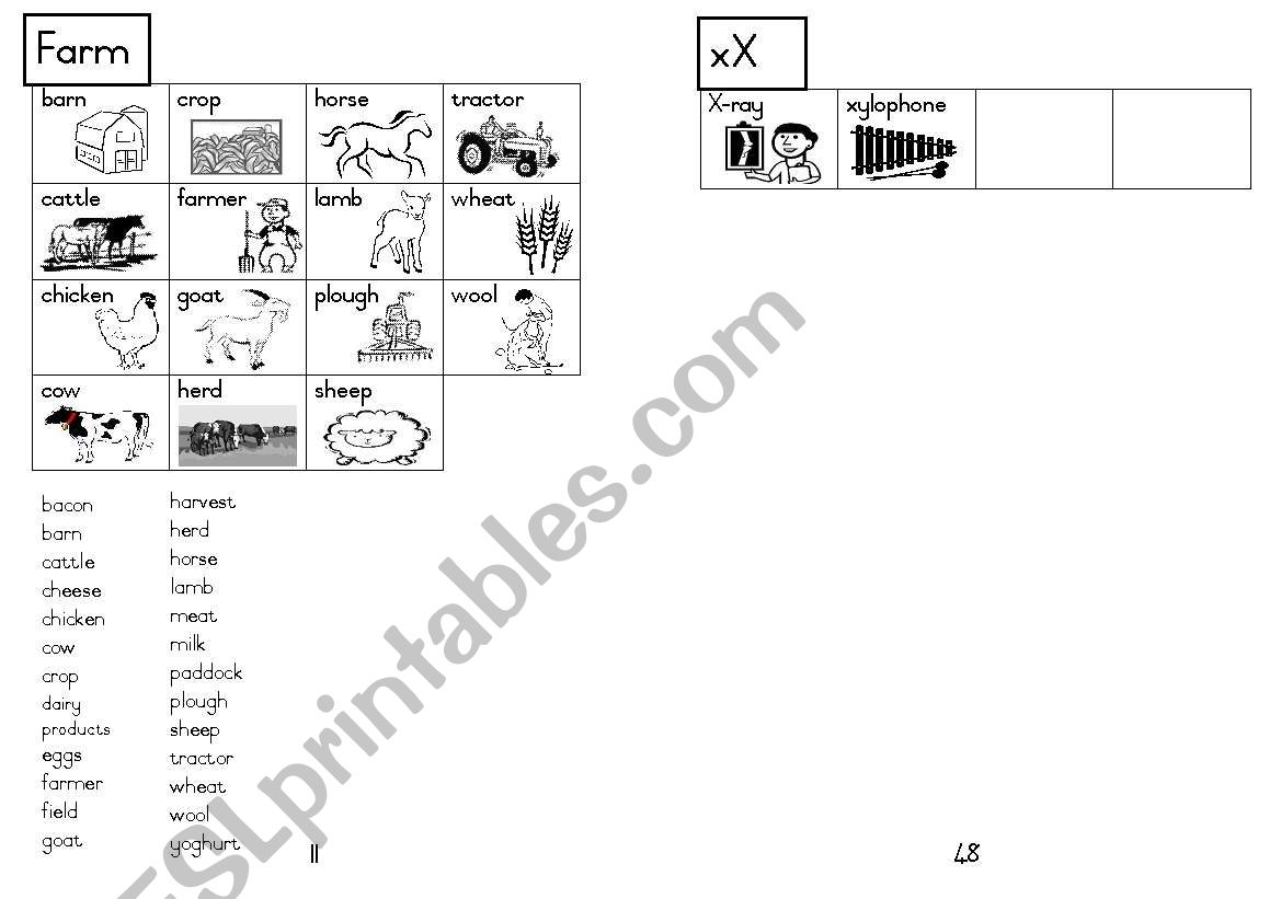 A5 Picture Dictionary 12