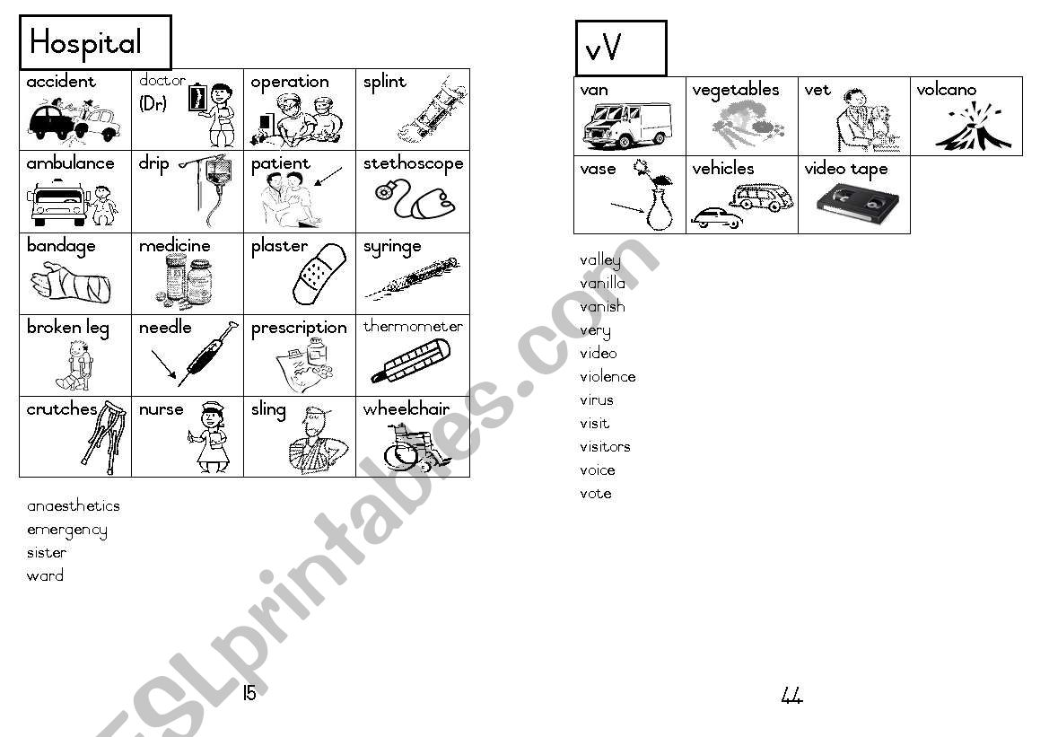 A5 Picture Dictionary 16