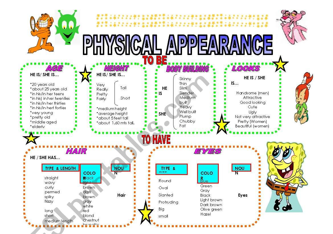 Physical Appearance Guide D