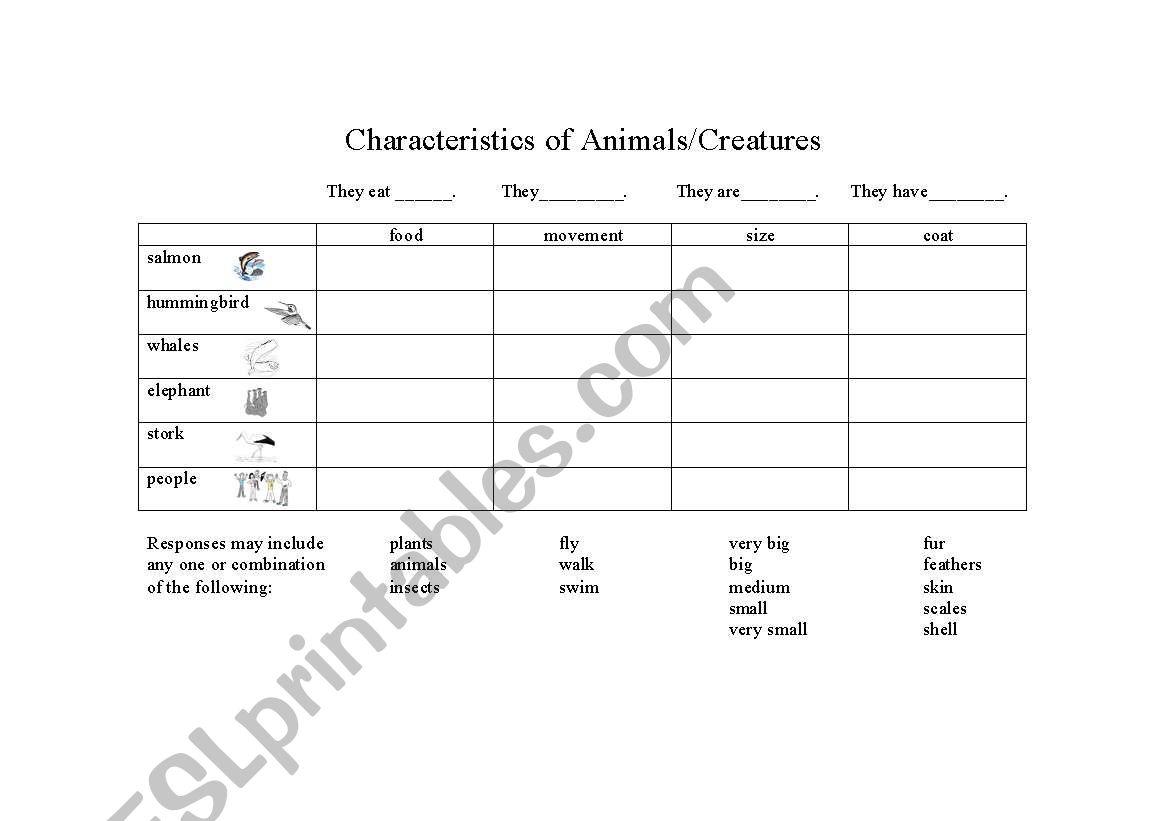 English Worksheets Characteristics Of Animals