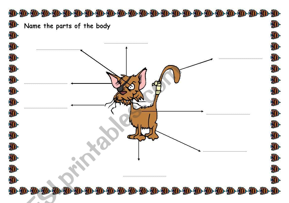 English Worksheets Animals Parts Of The Body