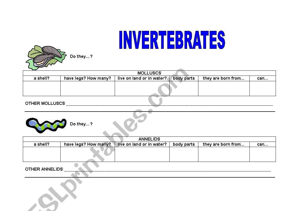 English Worksheets Invertebrates 1